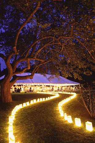lighted pathway to wedding tent