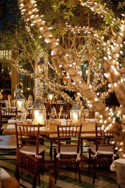 christmas lights around trees at a wedding