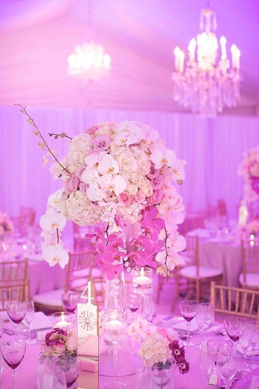 wedding purple up lighting