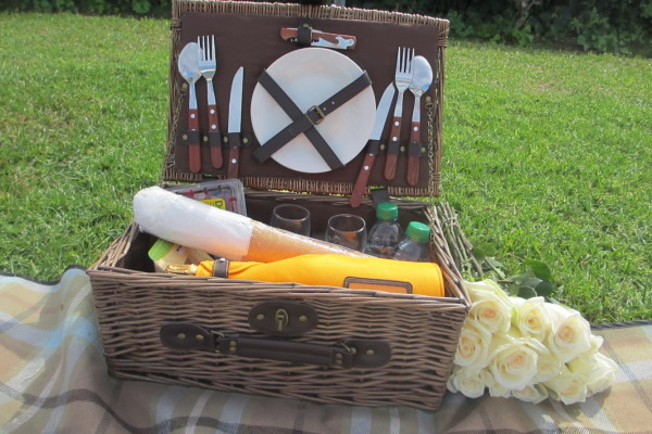 PICTURE PERFECT PICNIC