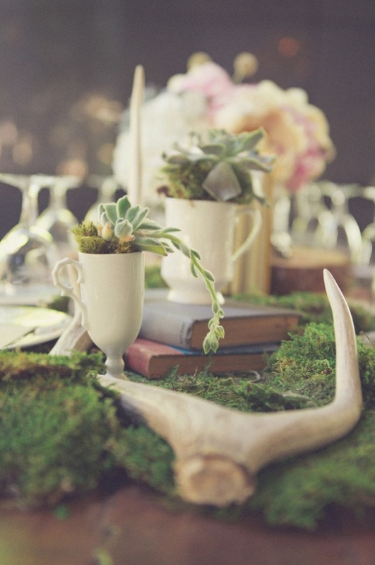 moss decorated table with white potted coffee mugs