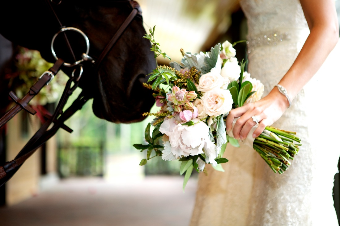 bride having horse smell her bouquet
