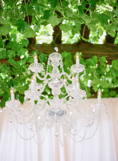 chandelier under vineyard vines