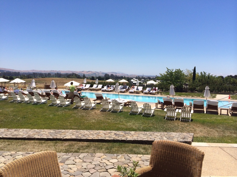 Carneros Inn pool with vineyard in background