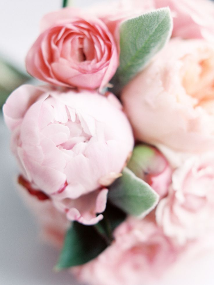 closed pink peonies wedding bouquet