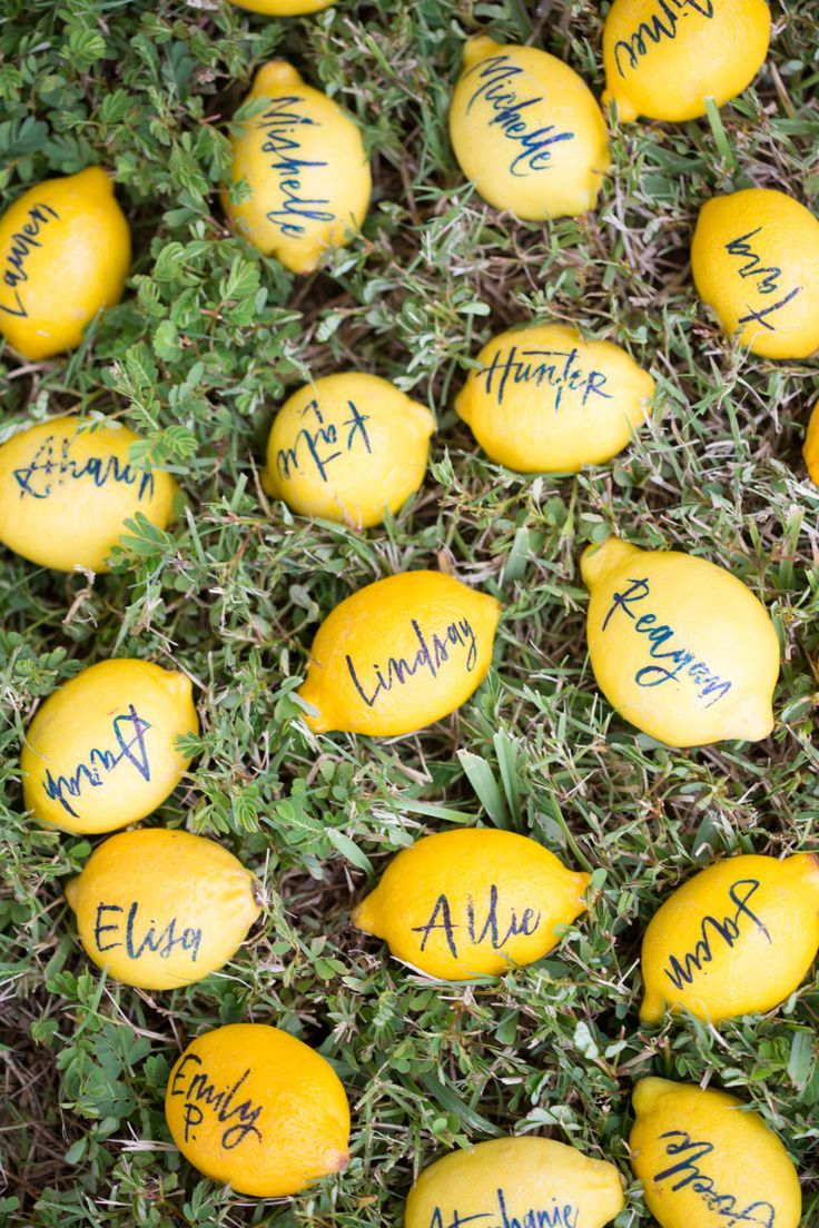 handwritten lemon place settings