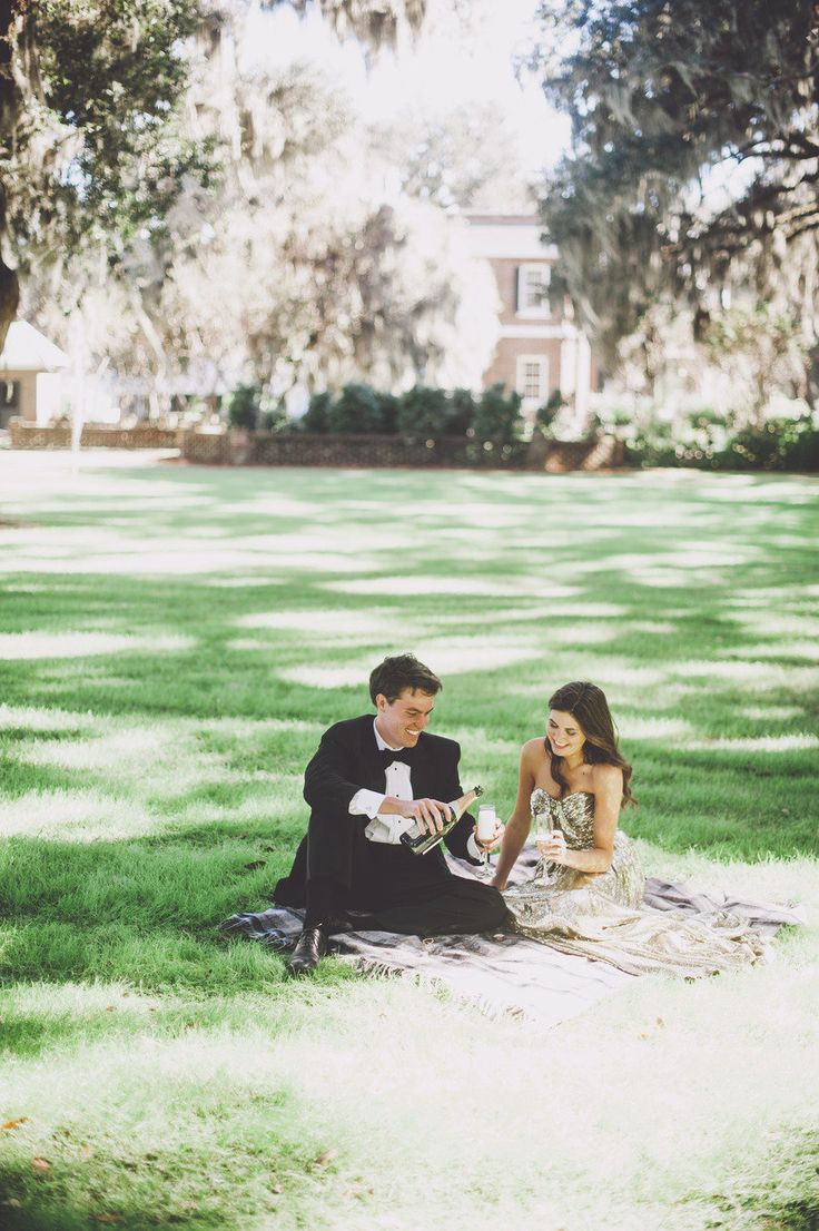 formal picnic with champagne