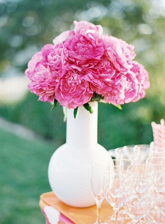 pink peonies in white vase