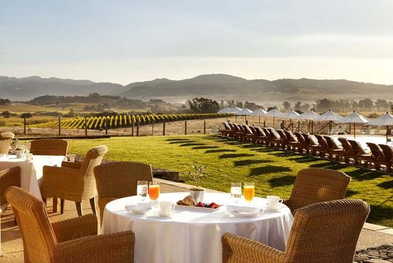 napa valley breakfast on a vineyard