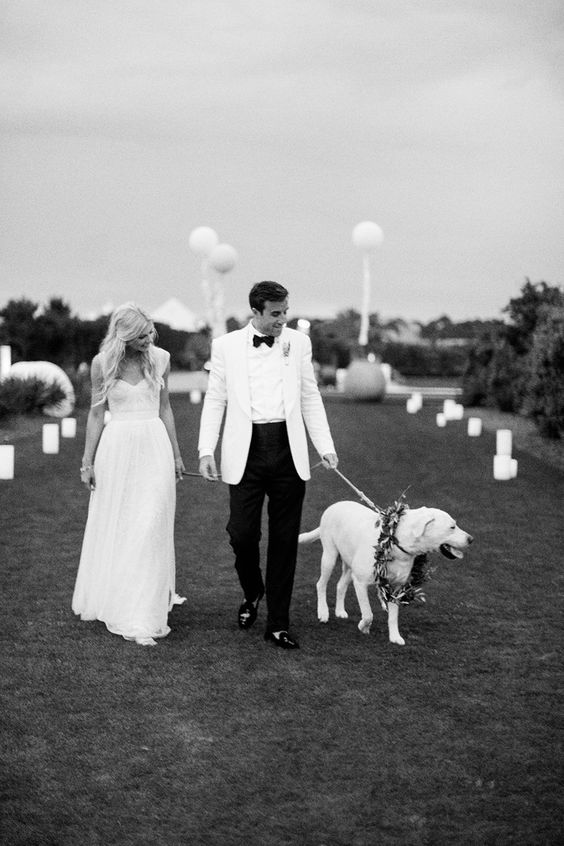 bride-and-groom-walking-dog-at-white-tie-wedding